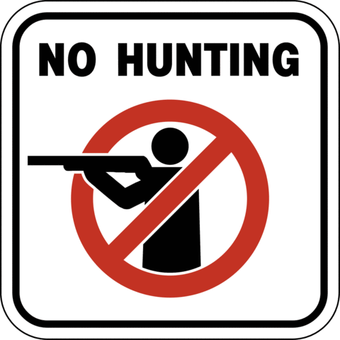 don't hunt for a topic yet